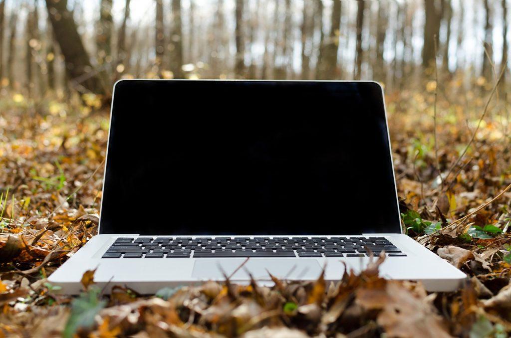 ноутбук в осеннем лесу